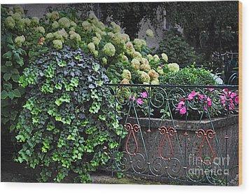 Hydrangeas Salzburg Wood Print by Mary Machare