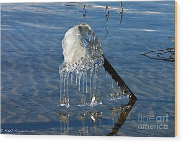 Icy Fence Post Wood Print by Mitch Shindelbower