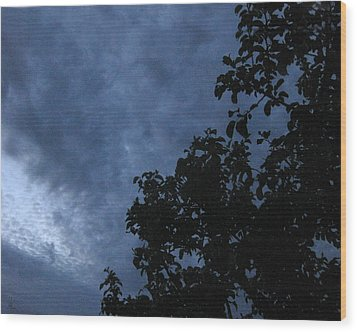 June Apple Trees In The Clouds Wood Print by Charles Dancik