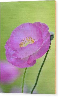 Just Call Me Pink Wood Print by Saija  Lehtonen