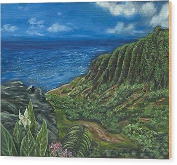 Kalalau Valley Wood Print by Brandon Hebb