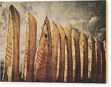 Kayaks Wood Print by Skip Nall