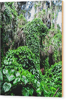 Kudzu Creature Wood Print by Christy Usilton