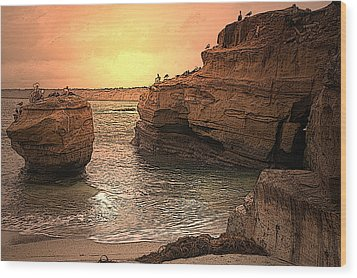 La Jolla Children's Cove Wood Print by Richard Shelton