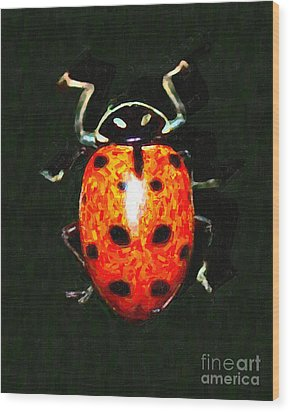 Ladybug Wood Print by Wingsdomain Art and Photography