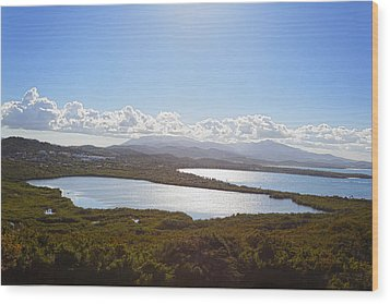 Laguna Grande  Wood Print by George Oze