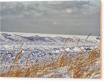 Lake Michigan On Ice Wood Print by Christopher Purcell