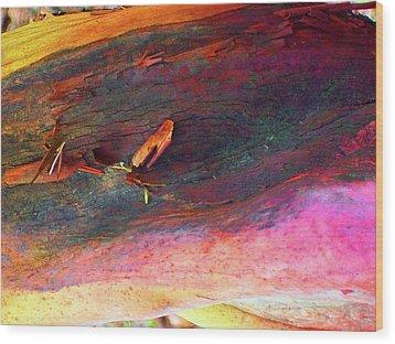 Wood Print featuring the digital art Landing by Richard Laeton