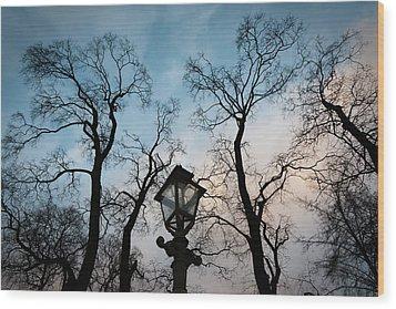 Lantern Wood Print by Konstantin Dikovsky