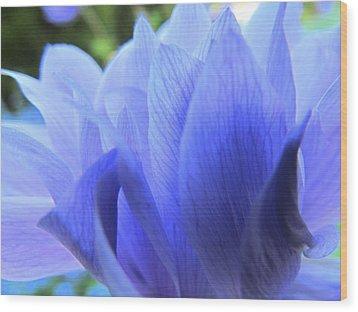 Layers Of Blue Wood Print by Eva Kondzialkiewicz