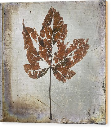 Leaf  With Textured Effect Wood Print by Bernard Jaubert