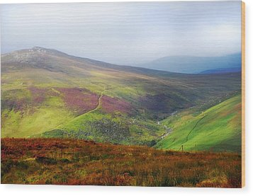 Light Over Wicklow Hills. Ireland Wood Print by Jenny Rainbow