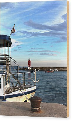 Little Red Lighthouse Wood Print by Jasna Buncic