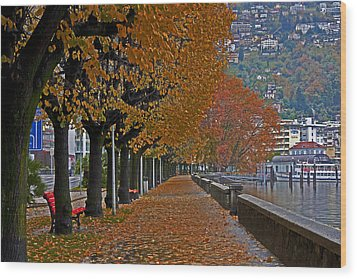 Locarno In Autumn Wood Print by Joana Kruse