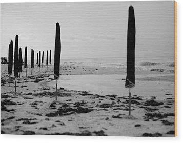 Lonely Beach Wood Print by Toni Hopper