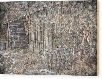 Lost Dog Wood Print by Jerry Cordeiro