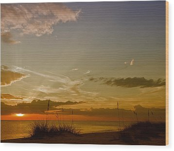 Lovely Sunset Wood Print by Melanie Viola