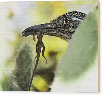 Lunch With A Roadrunner  Wood Print by Saija  Lehtonen