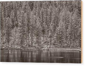 Madison River Yellowstone Bw Wood Print by Steve Gadomski