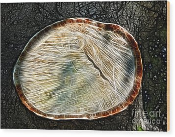 Magical Tree Stump Wood Print by Mariola Bitner