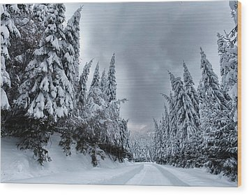 Magnificent Forest Wood Print by Evgeni Dinev