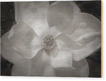 Magnolia 3 Wood Print by Rich Franco