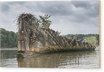 Mallows Bay Ship Graveyard - Maryland Wood Print by Brendan Reals