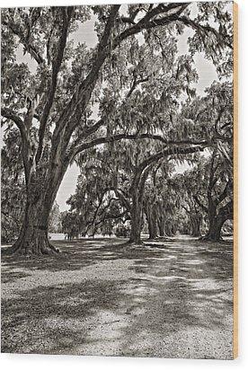 Memory Lane Monochrome Wood Print by Steve Harrington