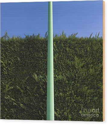 Metal Post Wood Print by Bernard Jaubert