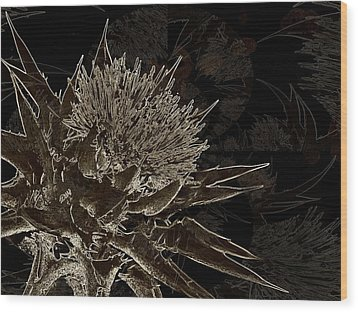 Milk Thistle In Sepia Wood Print by Shirley Sirois