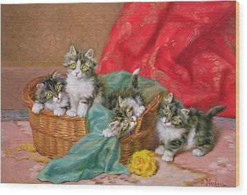 Mischievous Kittens Wood Print by Daniel Merlin