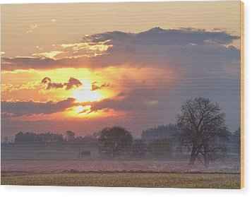 Misty Country Sunrise  Wood Print by James BO  Insogna