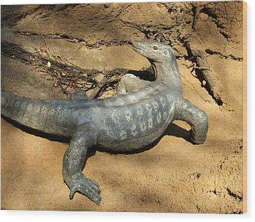 Monitor Lizard At Saint Louis Zoo Wood Print by David Edwards