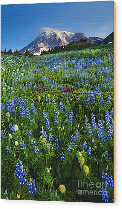 Mountain Garden Wood Print by Mike  Dawson