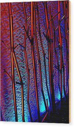 My Vegas Mandalay 9 Wood Print by Randall Weidner
