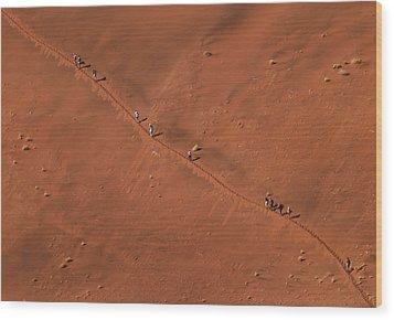 Namibia Dune Hoppers Wood Print by Nina Papiorek