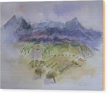 Napa Valley Ll Wood Print by Carolyn Zbavitel