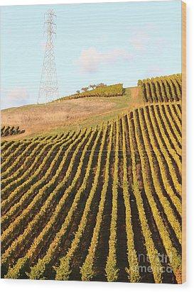 Napa Valley Vineyard . 7d9065 Wood Print by Wingsdomain Art and Photography