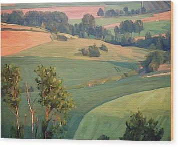 Near Eckelrade Wood Print by Nop Briex