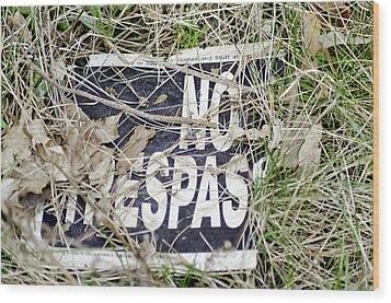 No Trespassing Wood Print by LeeAnn McLaneGoetz McLaneGoetzStudioLLCcom