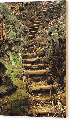 Old Forest Steps Wood Print by Dean Harte