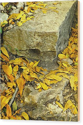 On The Beaten Path Wood Print by Joe Jake Pratt