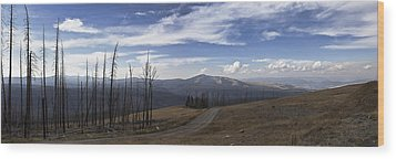 On Top Of The Mountains In Yellowstone National Park Wood Print by Joe Gee