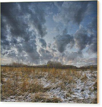 One Autumn Day Wood Print by Vladimir Kholostykh