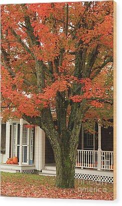 Orange Leaves And Pumpkins Wood Print by Deborah Benoit