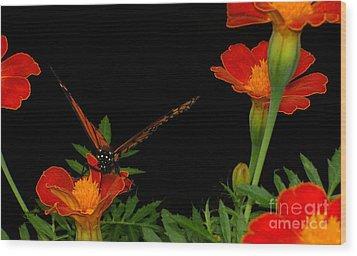Orange On Orange Wood Print by Lydia Holly