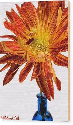 Orange You Happy Wood Print by Susan Smith