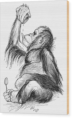 Orangutan, 19th Century Wood Print by
