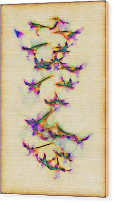Orchids In Flight Wood Print by Judi Bagwell