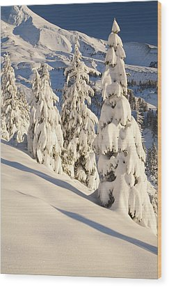 Oregon, United States Of America Snow Wood Print by Craig Tuttle